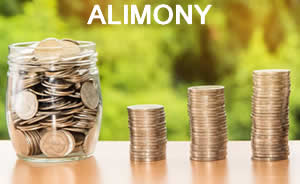 Orlando Attorney Helps With Alimony Claims