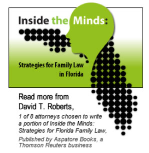 Inside the Minds: Strategies for Family Law in Florida